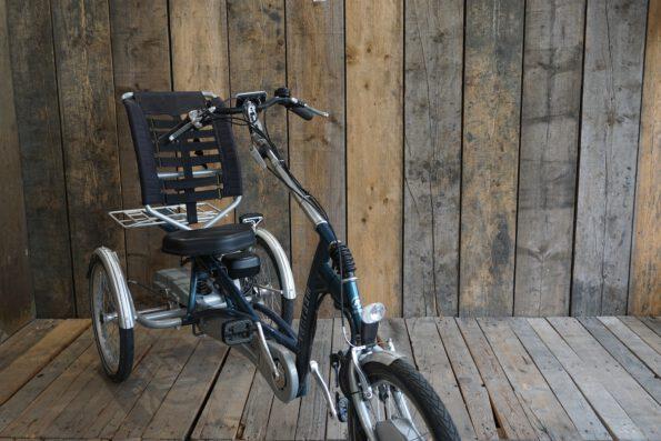 Van Raam Easy Rider Heinzmann Seite