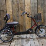 PF Mobility Disco Heinzmann DP Rot gebraucht FG