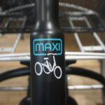 Van Raam Maxi o.E. Schwarz Matt FG